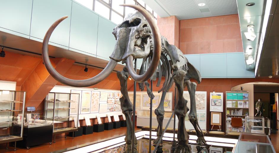 釧路市博物館
